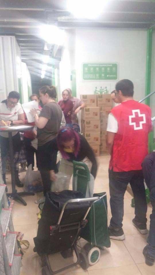 equipo recogida alimentos cruz roja