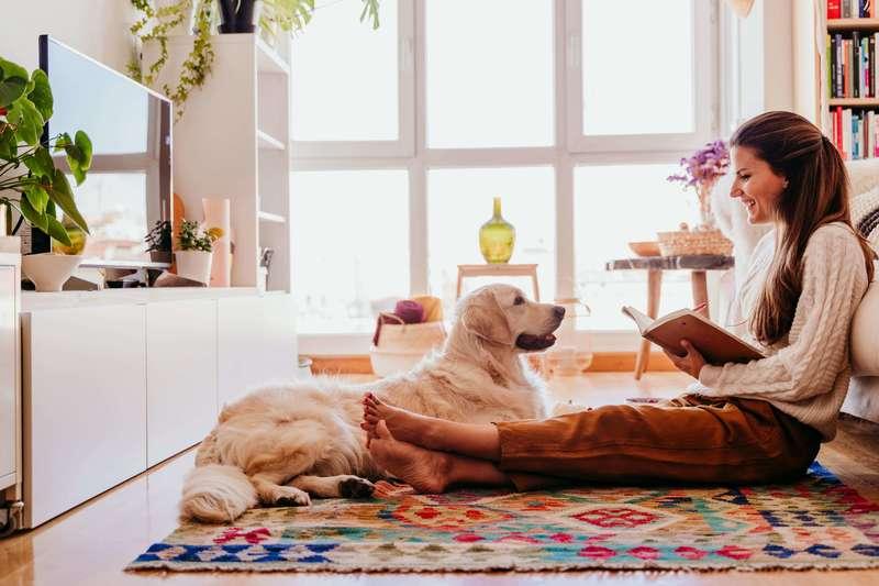 orden y limpieza en casa con animales